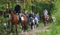 Reiten für die ganze Familie im Ferienclub Lüneburger Heide