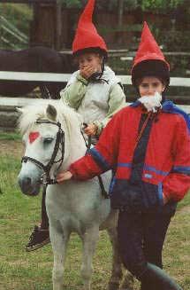 Ponymodenschau