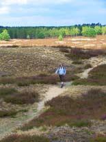 Wandern Lüneburger Heide